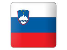 Slo Flag