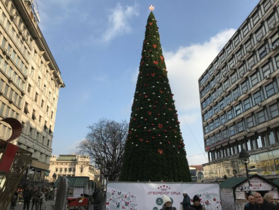 christmas tree belgrade